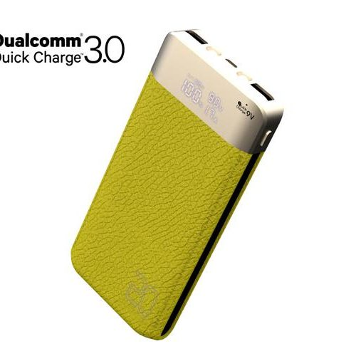 adaptive fast battery charger green